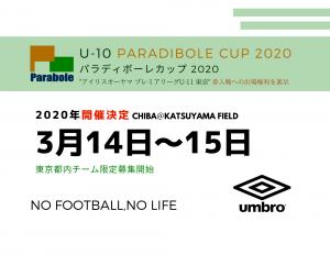 PARADIBOLE CUP アイキャッチ